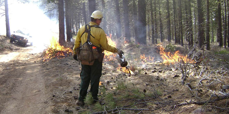 Contracting Prescribed Fire
